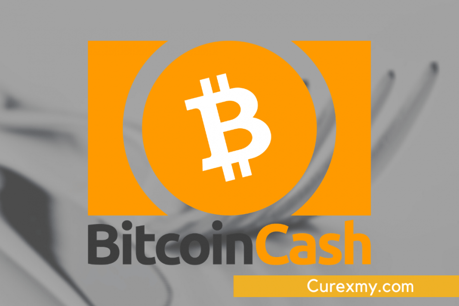 Bitcoin Cash BCH Hard Fork Scheduled For Nov 15, 2020, What you Need To Know